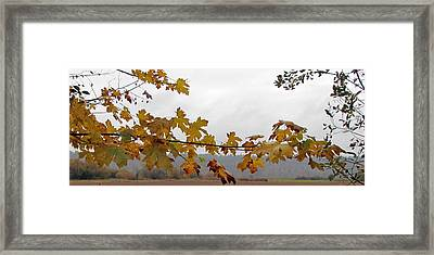 Framed Print featuring the photograph A Place Called Home by I'ina Van Lawick