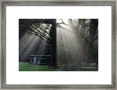 A Place For You Oregon Framed Print by Bob Christopher