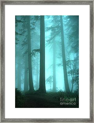 A Place Of Awe Framed Print