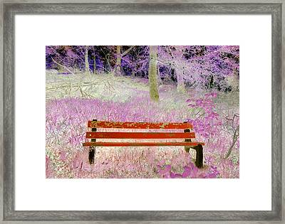 A Place To Rest Framed Print by The Creative Minds Art and Photography
