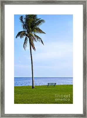 A Place To Think Framed Print by Eyzen M Kim