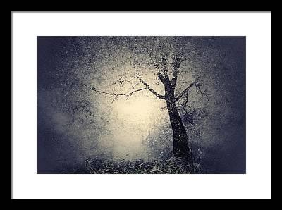 Imagine Photographs Framed Prints