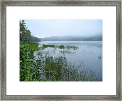A Poetry Of Mist Framed Print