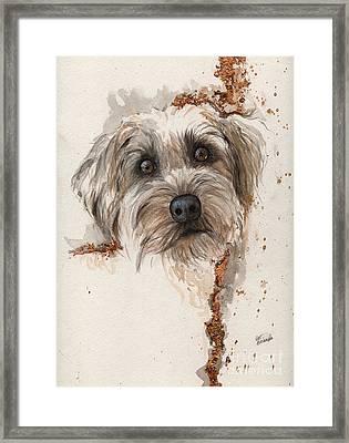 A Portrait Of A Dog Framed Print by Angel  Tarantella