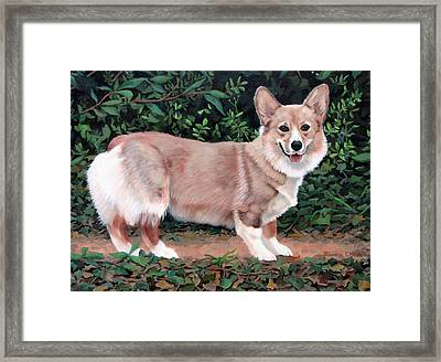A Portrait Of Pickle Framed Print