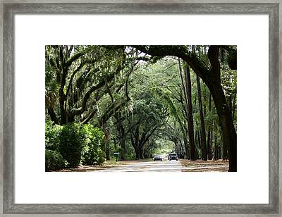 A Pretty Tree Covered Road Somewhere On Hilton Head Island Framed Print