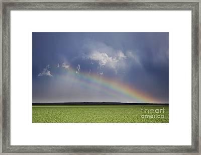 A Promise Framed Print