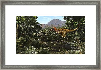 A Protofeathered Lythronax Comes Framed Print