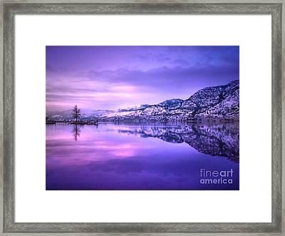 A Purple Tuesday Framed Print by Tara Turner