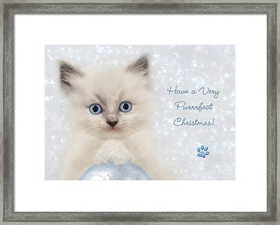 A Purrrfect Christmas Framed Print by Lori Deiter