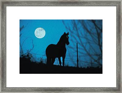 A Question Of Freedom Framed Print