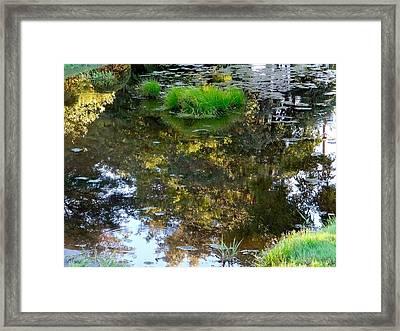 A Quiet Little Pond Framed Print by Ira Shander
