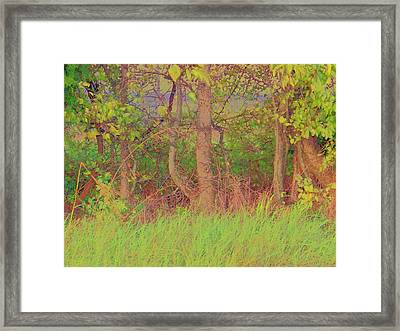 Framed Print featuring the photograph A Quiet Place by Shirley Moravec