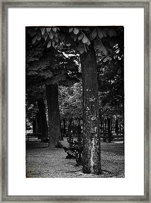 A Quiet Spot - Bench And Trees In Paris Framed Print