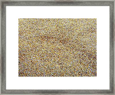 A Rather Corny Image Framed Print by Will Borden