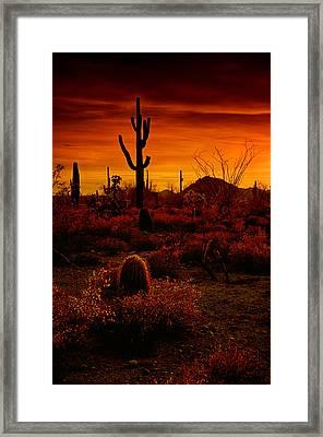 A Red Desert  Framed Print
