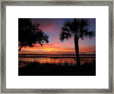 Framed Print featuring the photograph A Ribbon Of Hope by Joetta Beauford