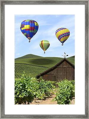 A Ride Through Napa Valley Framed Print