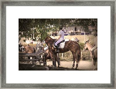 A Rider On A Horse Framed Print