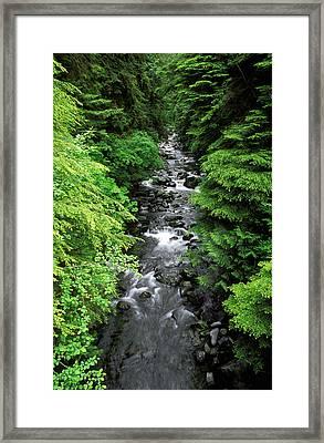A River Runs Through It Framed Print by Russ Bishop