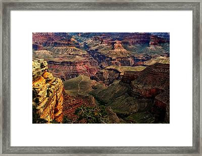 A River Runs Through It-the Grand Canyon Framed Print by Tom Prendergast