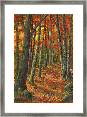 A Road Less Traveled Framed Print by Frank Wilson
