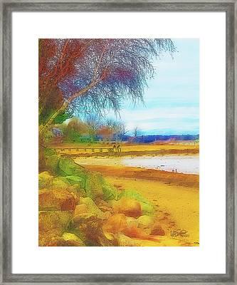A Rocky Beach Framed Print