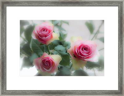 A Rose And A Rose And A Rose Framed Print
