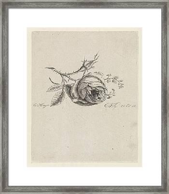 A Rose And Forget-me-nots, Elisabeth Johanna Koning Framed Print by Elisabeth Johanna Koning