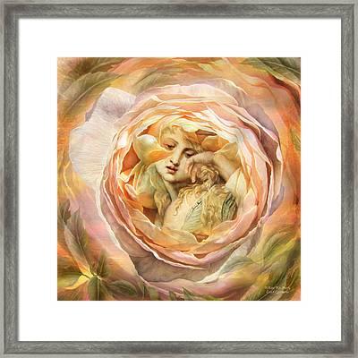 A Rose For Mary Framed Print