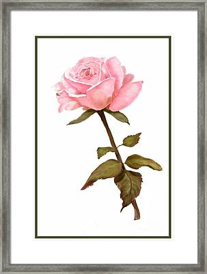A Rose For My Love Framed Print