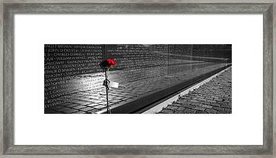 A Rose For Vietnam Framed Print