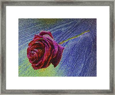 A Rose For You From Kenneth James Framed Print