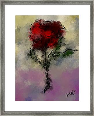 A Rose Is Framed Print