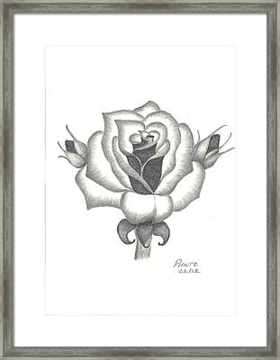 Framed Print featuring the drawing A Rose  by Patricia Hiltz