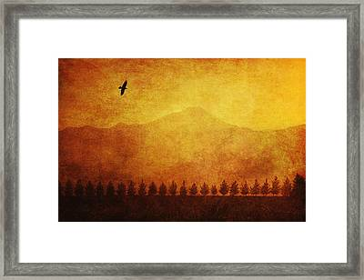 A Row Of Trees And A Raven Silhouetted Framed Print by Roberta Murray