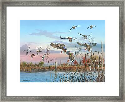 A Safe Return Framed Print