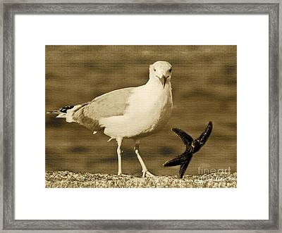 A Seagull Kind Of Day Framed Print