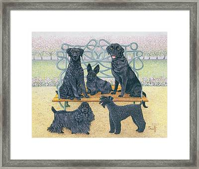 A Seat In The Park Framed Print by Pat Scott