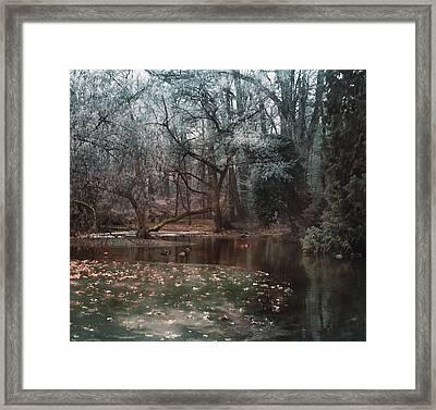 A Secret Place Under - 2 Framed Print by Akos Kozari