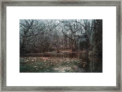 A Secret Place Under Framed Print by Akos Kozari