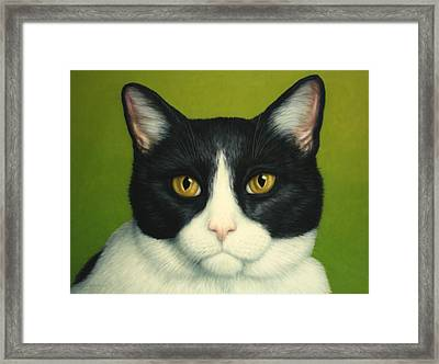 A Serious Cat Framed Print by James W Johnson