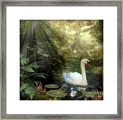 A Shady Brook Framed Print