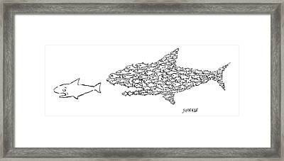 A Shark Is Chased By A School Of Fish That Framed Print