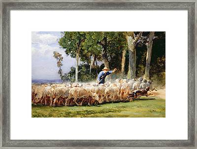 A Shepherd With A Flock Of Sheep Framed Print by Charles Emile Jacques