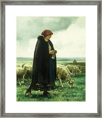 A Shepherdess With Her Flock Framed Print by Julien Dupre
