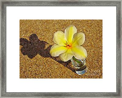 A Shot Of Yellow Framed Print