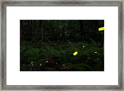 A Silent Symphony Framed Print