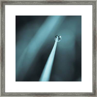 A Single Drop Framed Print