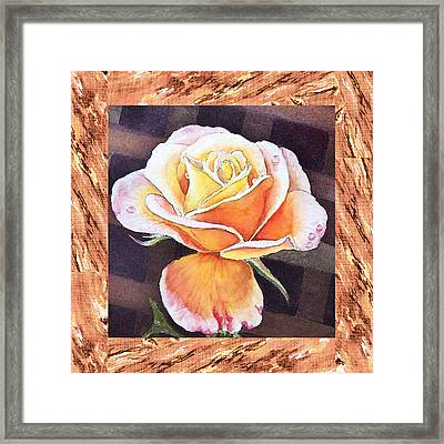 A Single Rose Dew Drops On Ruffles  Framed Print by Irina Sztukowski